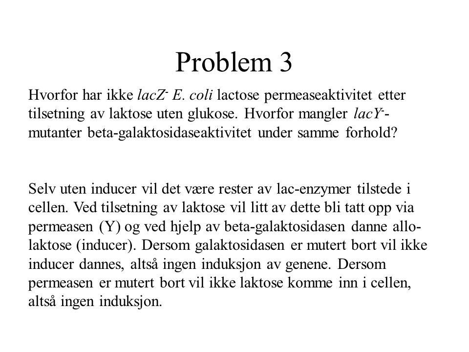 Problem 3 Hvorfor har ikke lacZ - E. coli lactose permeaseaktivitet etter tilsetning av laktose uten glukose. Hvorfor mangler lacY - - mutanter beta-g