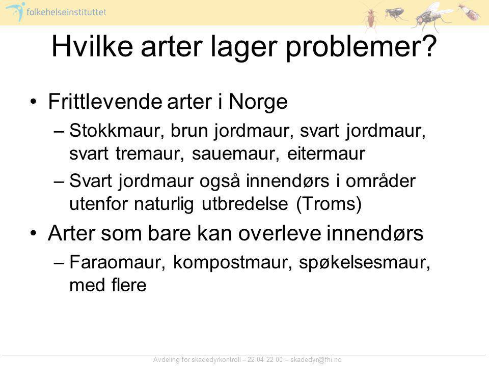 Avdeling for skadedyrkontroll – 22 04 22 00 – skadedyr@fhi.no Hvilke arter lager problemer? Frittlevende arter i Norge –Stokkmaur, brun jordmaur, svar