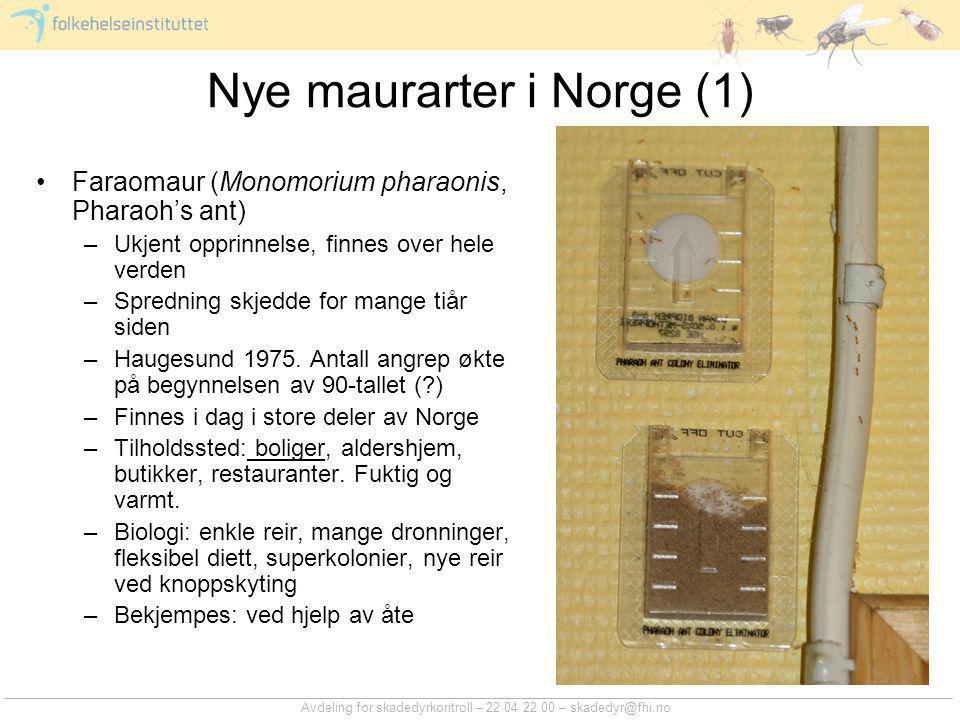 Avdeling for skadedyrkontroll – 22 04 22 00 – skadedyr@fhi.no Nye maurarter i Norge (1) Faraomaur (Monomorium pharaonis, Pharaoh's ant) –Ukjent opprin