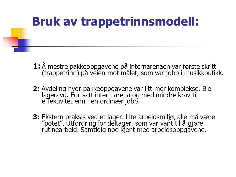 Bruk av trappetrinnsmodell: 1: Å mestre pakkeoppgavene på internarenaen var første skritt (trappetrinn) på veien mot målet, som var jobb i musikkbutik