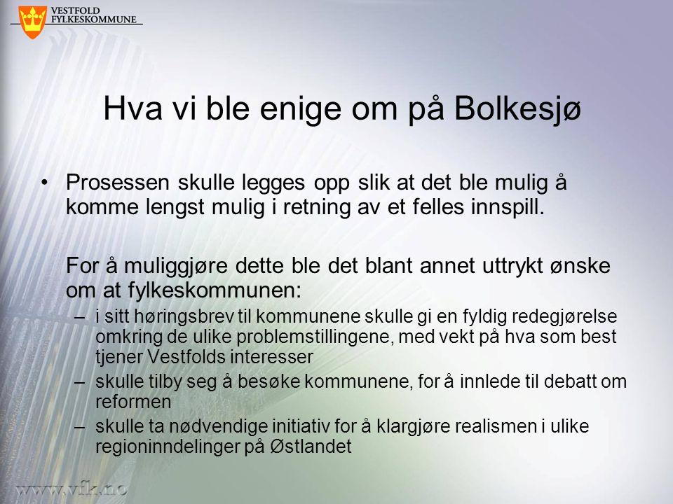 Hva vi ble enige om på Bolkesjø Prosessen skulle legges opp slik at det ble mulig å komme lengst mulig i retning av et felles innspill. For å muliggjø