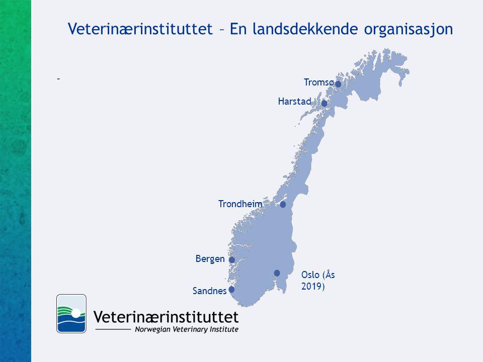 - Veterinærinstituttet – En landsdekkende organisasjon Tromsø Harstad Trondheim Oslo (Ås 2019) Sandnes Bergen