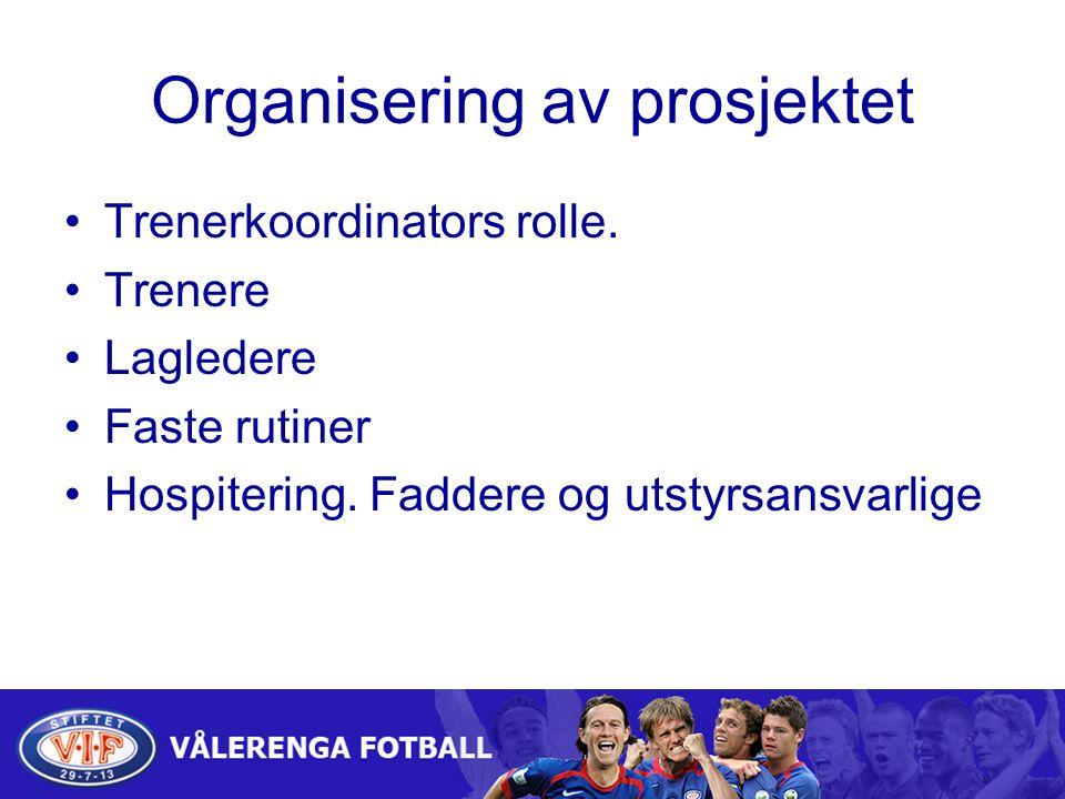 Organisering av prosjektet Trenerkoordinators rolle.