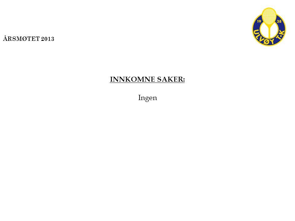 INNKOMNE SAKER: Ingen ÅRSMØTET 2013