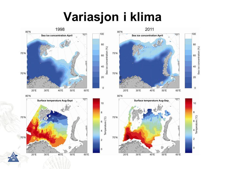 Variasjon i klima