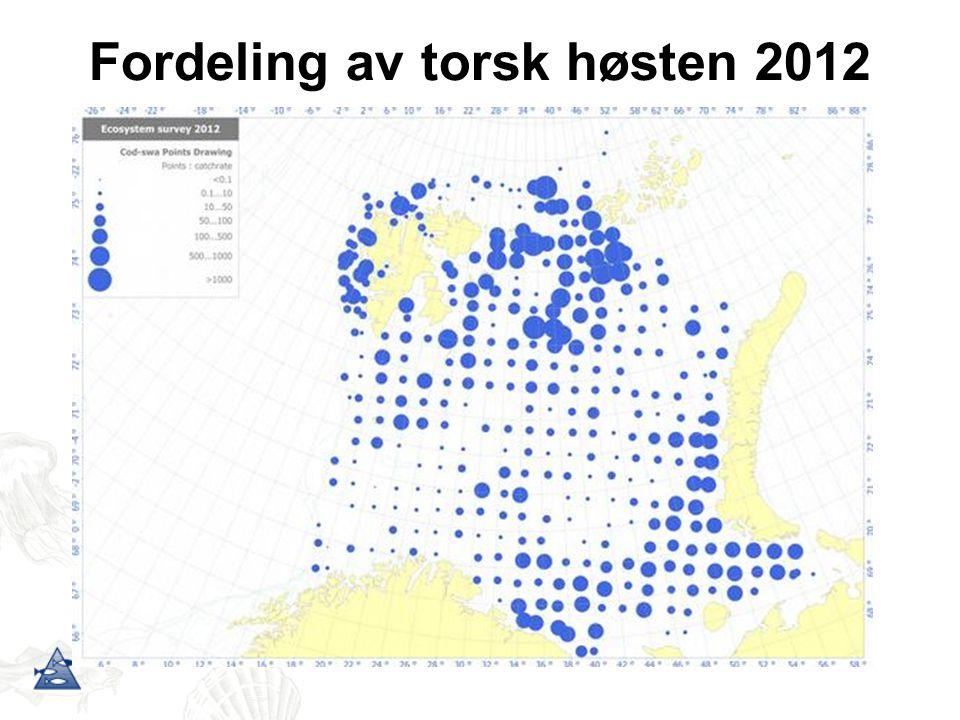 Fordeling av torsk høsten 2012