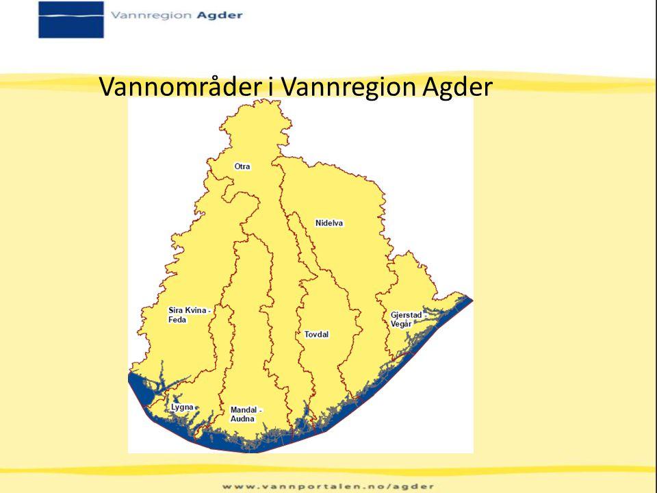 Vannområder i Vannregion Agder