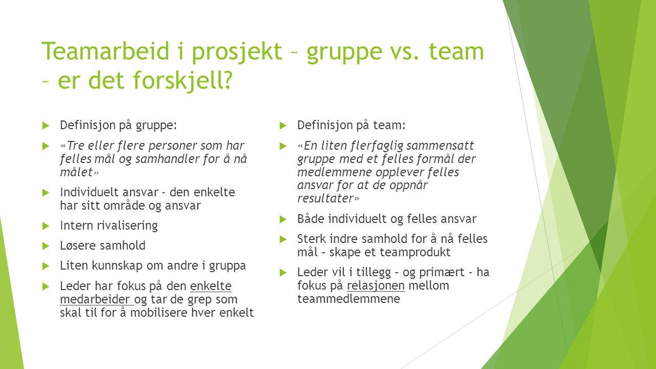 Teamarbeid i prosjekt – gruppe vs.team – er det forskjell.