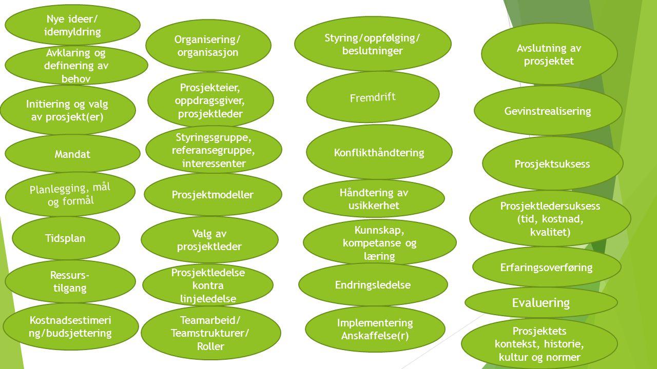 Prosjektledelse kontra linjeledelse Initiering og valg av prosjekt(er) Mandat Organisering/ organisasjon Planlegging, mål og formål Gevinstrealisering Prosjektsuksess Tidsplan Styring/oppfølging/ beslutninger Fremdrift Ressurs- tilgang Kostnadsestimeri ng/budsjettering Kunnskap, kompetanse og læring Konflikthåndtering Implementering Anskaffelse(r) Prosjektmodeller Prosjektets kontekst, historie, kultur og normer Endringsledelse Teamarbeid/ Teamstrukturer/ Roller Avklaring og definering av behov Håndtering av usikkerhet Avslutning av prosjektet Prosjektledersuksess (tid, kostnad, kvalitet) Erfaringsoverføring Valg av prosjektleder Nye ideer/ idemyldring Prosjekteier, oppdragsgiver, prosjektleder Styringsgruppe, referansegruppe, interessenter Evaluering