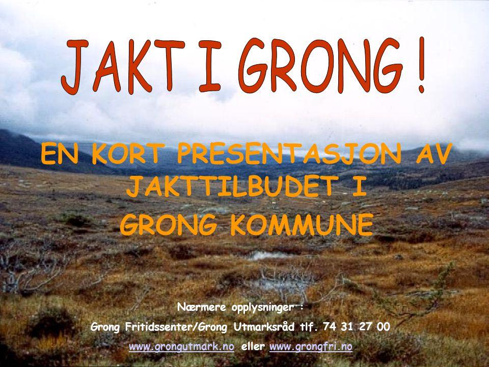EN KORT PRESENTASJON AV JAKTTILBUDET I GRONG KOMMUNE Nærmere opplysninger : Grong Fritidssenter/Grong Utmarksråd tlf. 74 31 27 00 www.grongutmark.noww