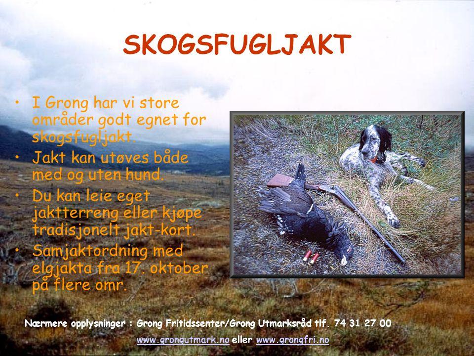 SKOGSFUGLJAKT I Grong har vi store områder godt egnet for skogsfugljakt. Jakt kan utøves både med og uten hund. Du kan leie eget jaktterreng eller kjø