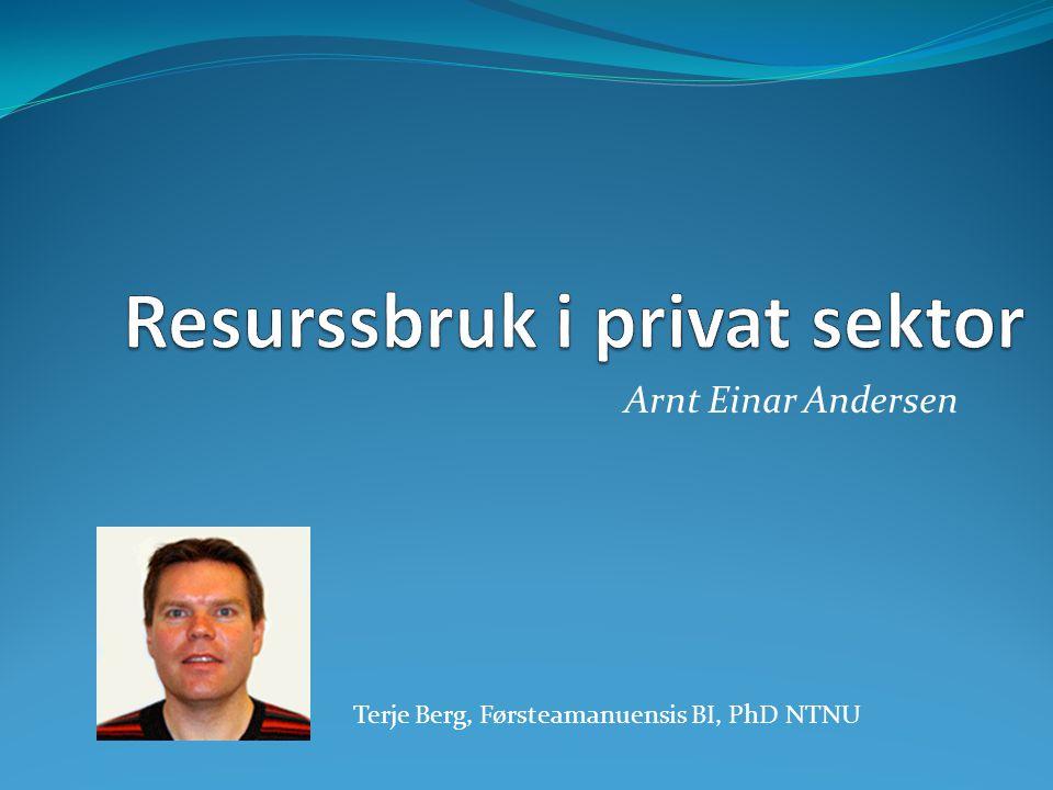 Arnt Einar Andersen Terje Berg, Førsteamanuensis BI, PhD NTNU