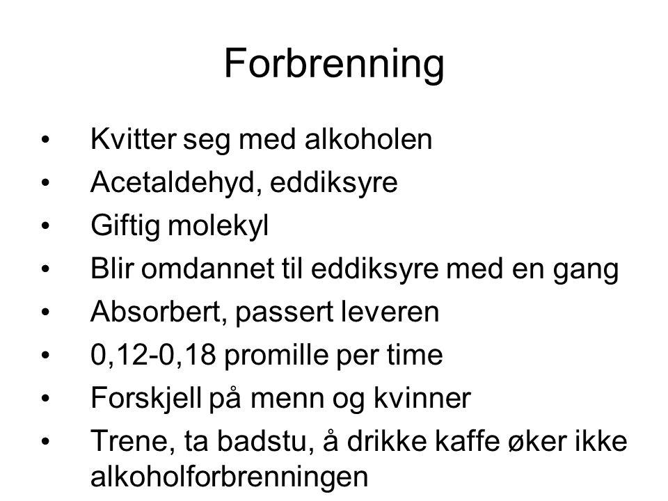 promille forbrenning