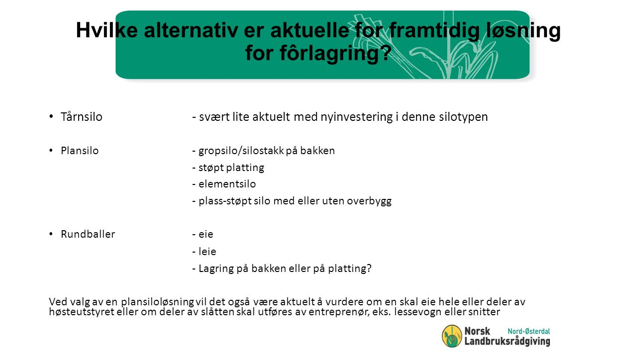 Hvilke alternativ er aktuelle for framtidig løsning for fôrlagring.