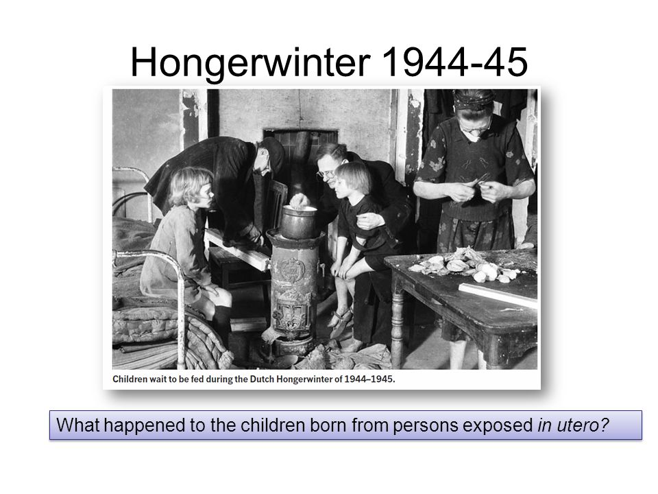 Hongerwinter 1944-45 What happened to the children born from persons exposed in utero