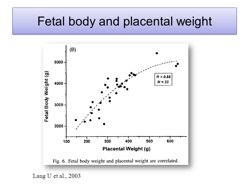 Lang U et al., 2003 Fetal body and placental weight