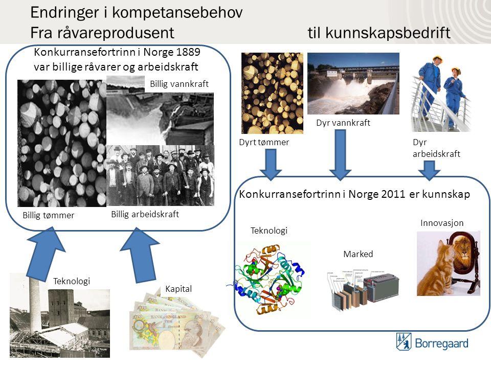 Fantastisk Gudbrand Rødsrud Teknologidirektør Forretningsutvikling Borregaard KD78