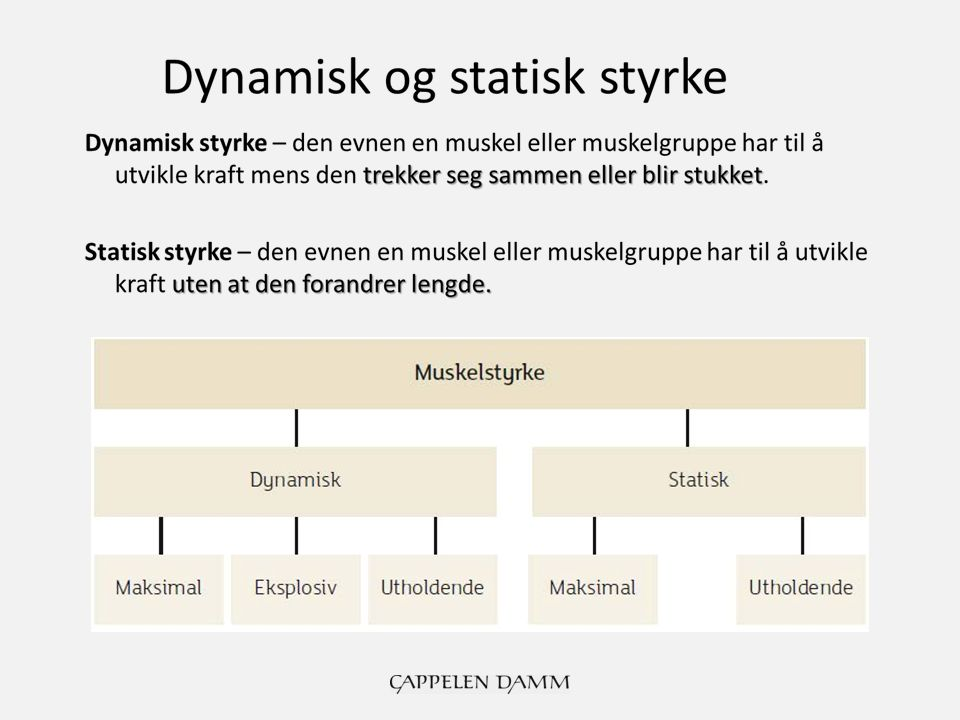 dynamisk eller statisk ip