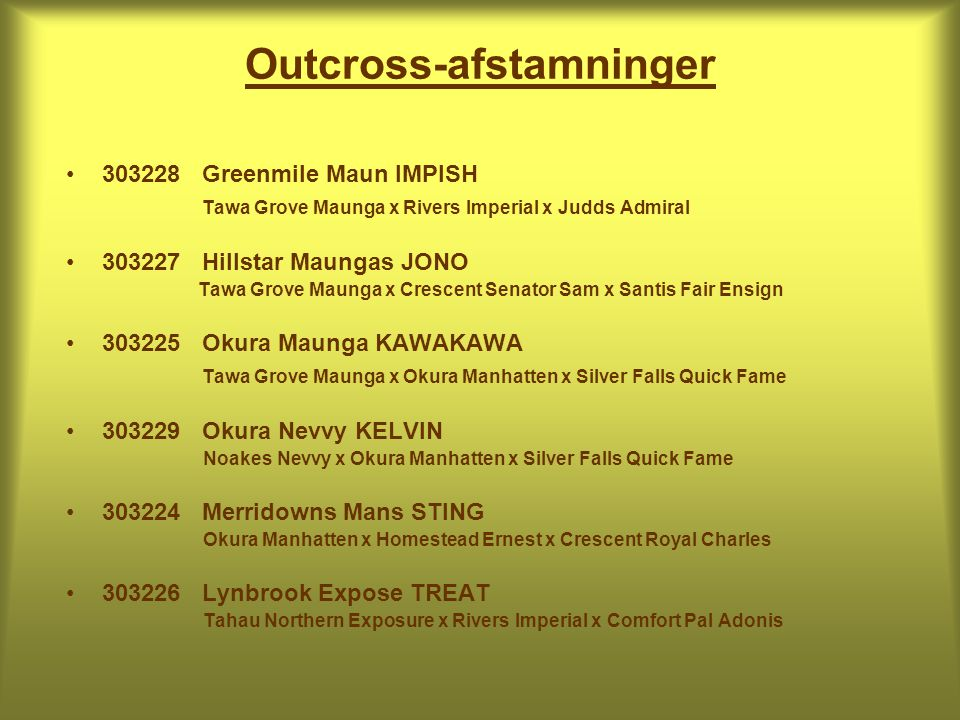 Outcross-afstamninger • Greenmile Maun IMPISH Tawa Grove Maunga x Rivers Imperial x Judds Admiral • Hillstar Maungas JONO Tawa Grove Maunga x Crescent Senator Sam x Santis Fair Ensign • Okura Maunga KAWAKAWA Tawa Grove Maunga x Okura Manhatten x Silver Falls Quick Fame • Okura Nevvy KELVIN Noakes Nevvy x Okura Manhatten x Silver Falls Quick Fame • Merridowns Mans STING Okura Manhatten x Homestead Ernest x Crescent Royal Charles • Lynbrook Expose TREAT Tahau Northern Exposure x Rivers Imperial x Comfort Pal Adonis