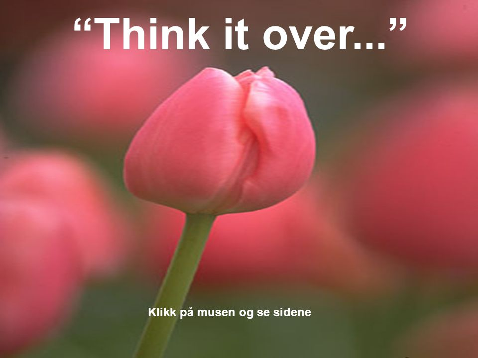 Think it over... Klikk på musen og se sidene